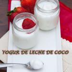Como hacer yogur casero de leche de coco sin lactosa