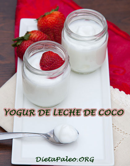 yogur sin lactosa casero