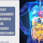 Fase de Reintroducción y Suplementos del Protocolo Autoinmune Paleo