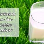 Lacteos en la Dieta Paleo