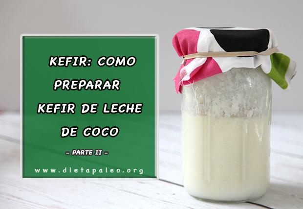 Cómo Preparar Kefir De Leche De Coco Dieta Paleo