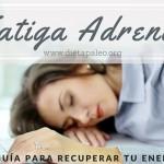 Fatiga Adrenal guia para recuperar tu energia